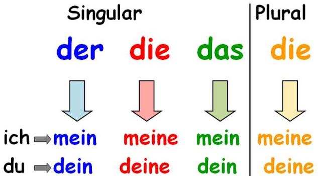 grammatik-possessivpronomen1